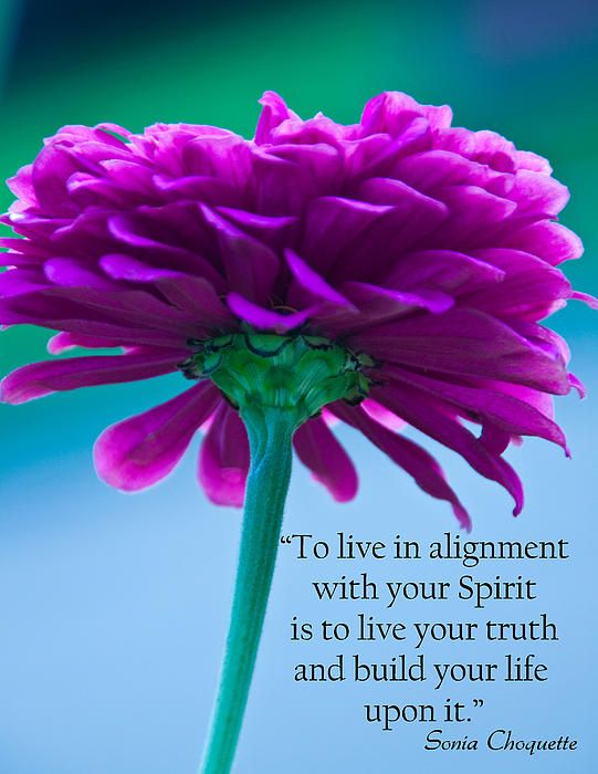 Living Your Life in Alignment With a Partner